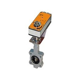 Belimo F6100-150SHP + 2*GMX24-MFT-X1 US