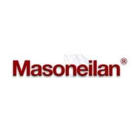 Masoneilan 202503483-250-0000
