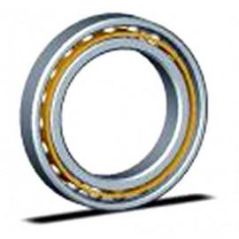 Kaydon Bearings MTO-170