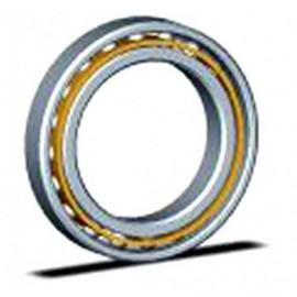 Kaydon Bearings RK6-25E1Z